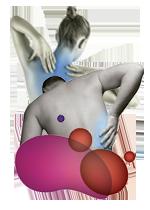 Músculos, ligamentos y tendones